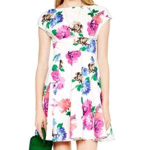 Kate Spade Blooms Fit and Flare Dress Freshwhite